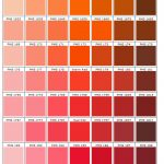 shades of orange and pink PMS 155 - 202