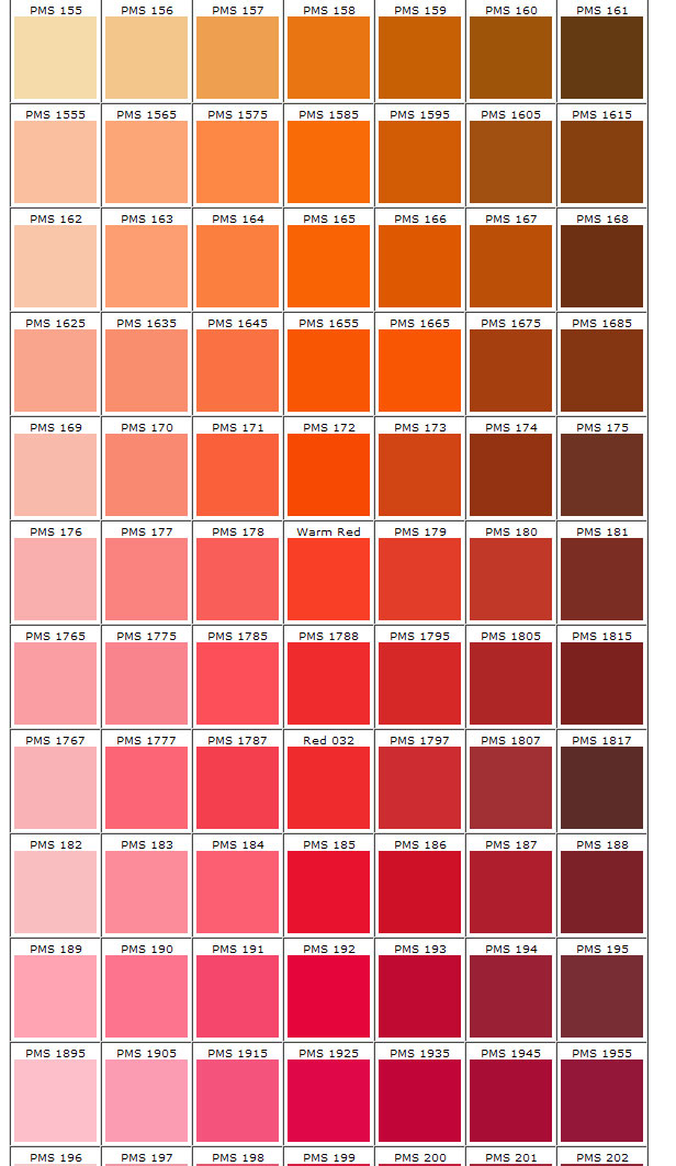 Shades Of Orange And Pink Pms 155 202