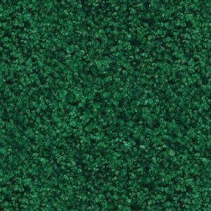 Kelly Green entrance mat