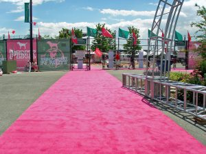 outdoor aisle runner